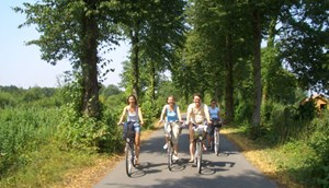 Cycling Hohe Mark